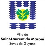 Appel à candidature à l'élection de la Miss Saint-Laurent 2011 et de ses Demoiselles d'Honneur.
