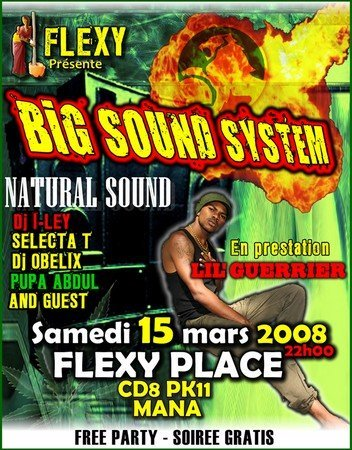 Big Sound System chez Flexi place