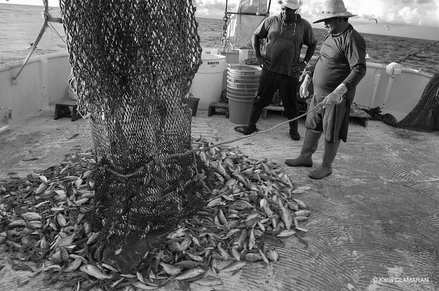 Expo : Regard sur la pêche