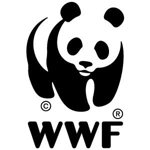 La WWF, l'ONCFS et la DIREN se réunissent en comité de pilotage pour le plan de Restauration Tortues Marines de Guyane