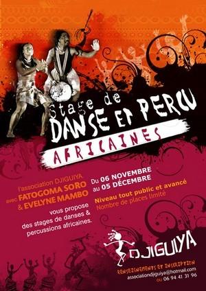Stage de danse et percu africaines