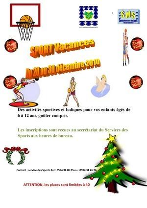 Activités sportives et ludiques pour les enfants âgés de 06 à 12 ans, du 20 au 30 décembre 2010.