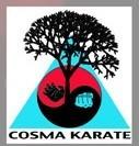 Séances de Self Défense et de Karaté organisées par le COSMA KARATE