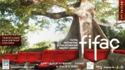 """[FIFAC] : """"FLAG, une vie en trompe-l'oeil"""" de Pierre Verdez"""