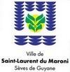 Travaux d'élagage à Saint-Laurent du Maroni, les 03 et 04 Mai 2012 à la Rue Victor HUGO.