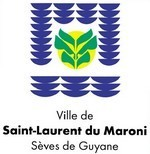 Inventaire et repérage des éléments du petit patrimoine bâti des cours et des jardins du centre ville de Saint-Laurent du Maroni.