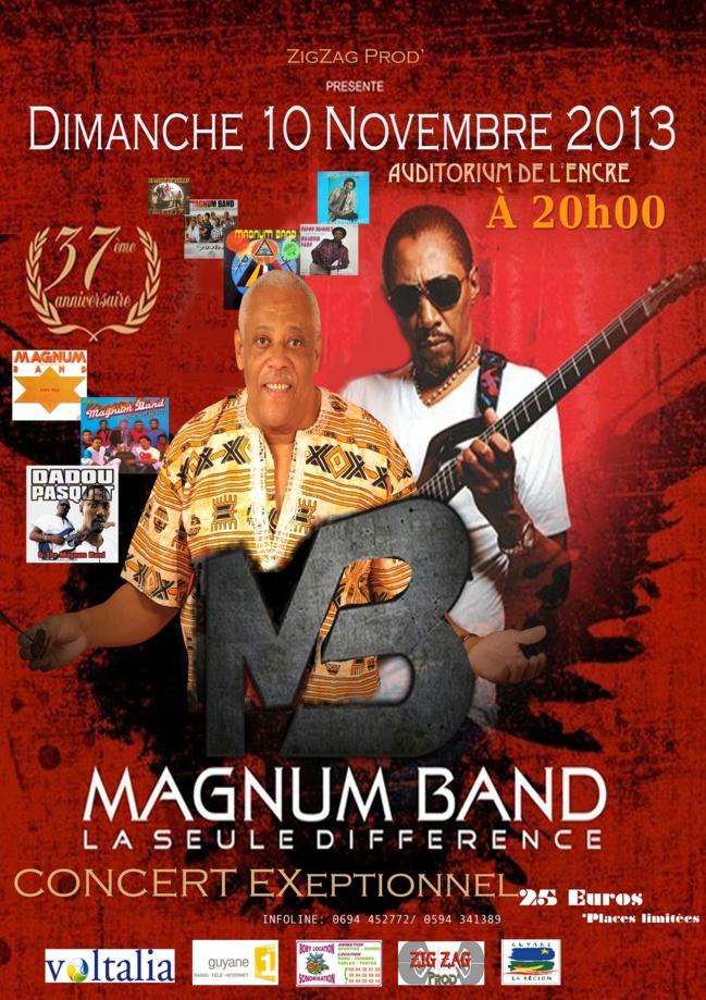 Le groupe Magnum Band en concert le 10 novembre 2013