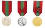 Cérémonie de remise de Médailles de la Famille française