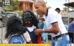 [Carnaval 2020] : Cavalcade des groupes du dimanche 23 février
