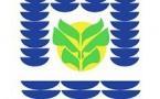 [#coronavirusguyane] : mise en place d'un service minimum des services municipaux à compter du 16 mars 2020
