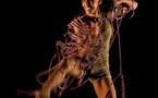 """L'association Correspondanses vous propose des stages """"danse thérapie et techniques"""""""