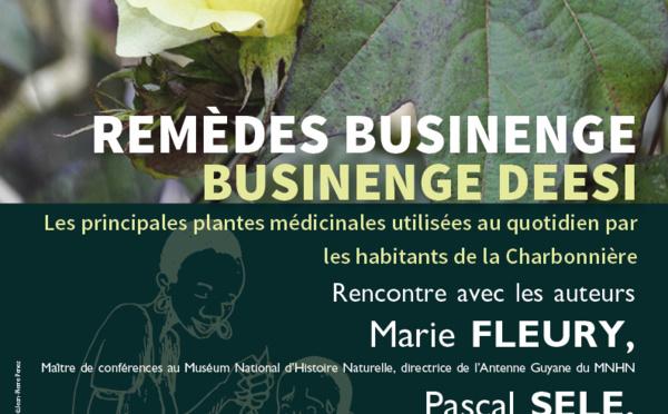 Jeudis du patrimoine : conférence sur les remèdes bushinenge