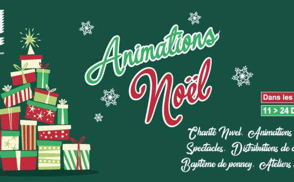[Fêtes de fin d'année] : animations de Noël dans les quartiers