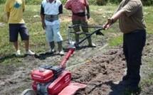 La lettre d'information du Groupement de Développement Agricole de Mana (GDA) - juillet 2011