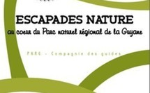 Escapades nature au coeur du Parc naturel régional de la Guyane - Juillet Août 2011