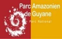 Le Parc amazonien de Guyane lance sa chaîne vidéo sur la toile à l'occasion de ses 5 ans !