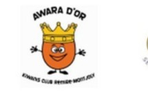 Awara d'Or 2012, appel à candidature