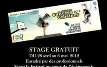 Stage de Web Reporter à Saint-Laurent du Maroni, pour les 16-25 ans.