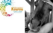 Fête du cheval ce Dimanche 23 septembre 2012 à Kourou.