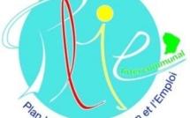 Convention communale d'adhésion au PLIE Guyane :