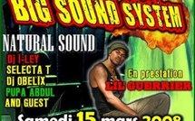 Big Sound System chez Flexi place